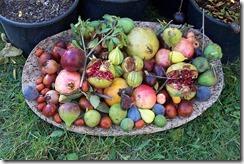 Mangez des fruits de saison