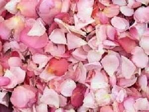 L'huile essentielle de rose pacifie les excès de Pitta