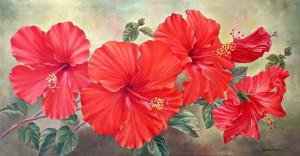 L'hibiscus indien n'a pas les mêmes propriétés que l'occidental