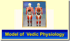 Modèle de la physiologie védique