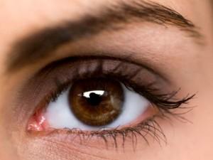Le vue est essentielle à tout âge de la vie