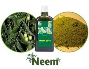 Le neem est couramment utilisé en Ayurvéda
