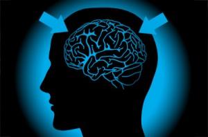 La méditation influence le cerveau