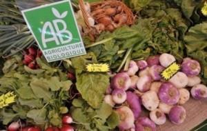 """Étal de légumes """"bio"""""""