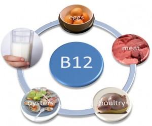 Les sources classiques de vitamine B 12