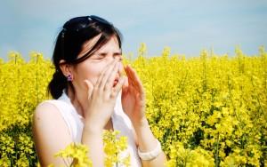 Allergie de printemps