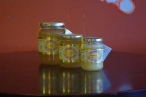 Le miel biovédique a les vertus d'un Rasayana