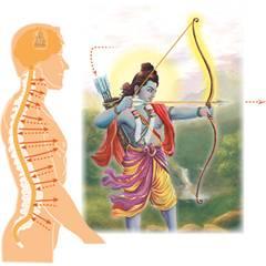 L'arc de Rama, la colonne vertébrale