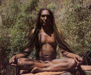Les Yogis de l'Himalaya utilisent Brahmi