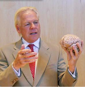 Organisation du cerveau